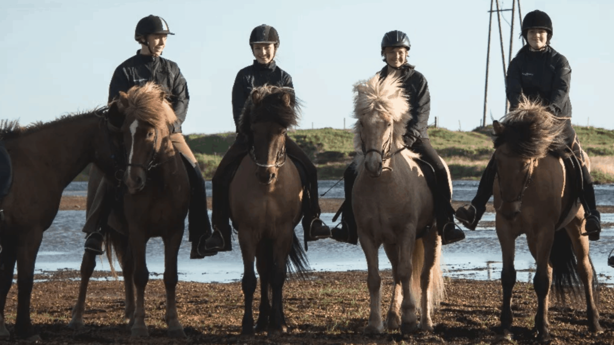 Horseback Riding Tours in Iceland – get 10% off these top rated tours